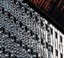 Denver reflection 16 by luvdusty
