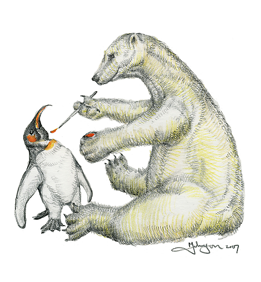 Colour Bear by markfineart