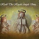 Hark! The Herald Angels Sing by jules572