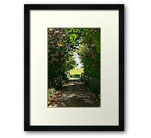 Early Spring in Ireland Framed Print