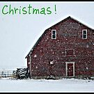 Merry Christmas by 4fingersplusone