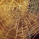 Golden Web by Jay Gross