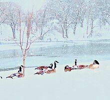 Winter In Wichita by Vince Scaglione