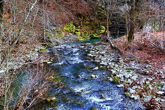 Dabney Creek by NatureGreeting Cards ©ccwri