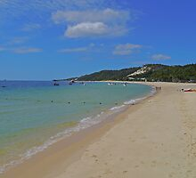 Beach, Tangalooma, Queensland, Australia by Margaret  Hyde