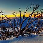 1635 Mt Hotham by hangingpixels