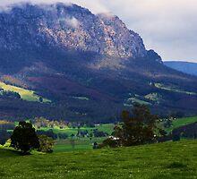 Mt Roland - North West Tasmania by Ruth Durose