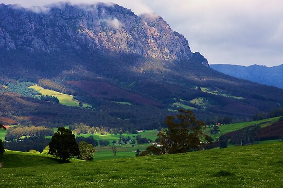 Mt Roland - North West Tasmania by Ruth Durose