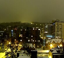 Mount royal Christmas panorama by AndreCosto