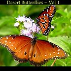 Desert Butterflies ~ Vol 1 by Kimberly P-Chadwick