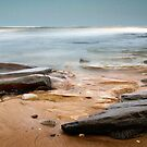 Evening Waves by Steven  Lippis