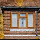 brown window by richard  webb