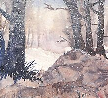Winter on The Common by Val Spayne