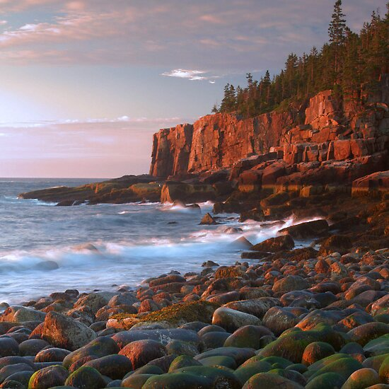 Otter Cliffs Sunrise by Stephen Vecchiotti
