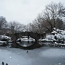 Bridge Over Lake, Snow-Covered Central Park  by lenspiro