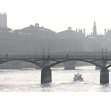 bridge over the river seine Photographic Print