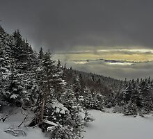 View from summit of Bretton woods ski area 4 by Anton Oparin
