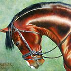 Aparee, Trakehner Stallion by Jean Farquhar