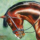 Aparee, Trakehner Stallion by Jean Farquhar