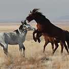Horsin' Around by Gene Praag