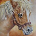 Miniature Pony Mare by Margaret Stockdale