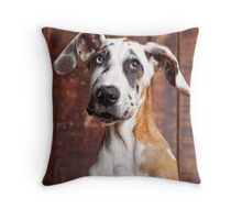 Did someone say food? Throw Pillow
