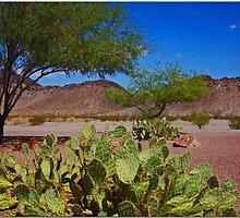 Mojave Desert Scene by Chet  King
