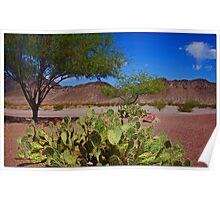 Mojave Desert Scene Poster
