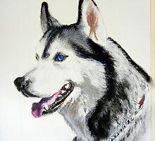 """""""Blue""""  Pastel Husky by Jean Farquhar"""