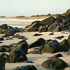 Shelly Beach - Ballina Northern NSW by OzNatureshots