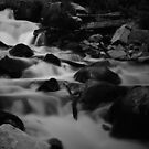 Steavenson Falls II B&W by Andrejs Jaudzems