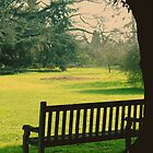 Bench under a tree by Jasna