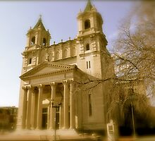 Cathedral of the Sacred Heart, Richmond, Va.  by sabiar69