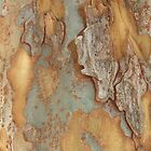 Tree Bark Abstract #6 by Jane Underwood