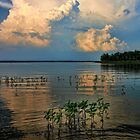 Clouds And High Water by Carolyn  Fletcher