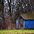 Little Blue Shed by Sheryl Gerhard