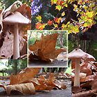 Autumn Collage by RobsVisions