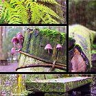 Forest Collage by RobsVisions