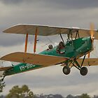 Tiger Moth FLy in  by Yvonne Kirk