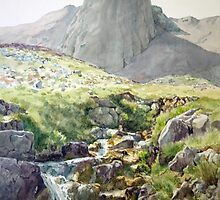 Buttress on Fuar Tholl Wester Ross Scotland by Joyce Grubb