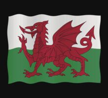 Welsh flag by stuwdamdorp