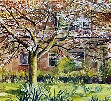 Cherry Tree by Joyce Grubb