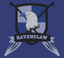 Ravenclaw Quidditch (2) by forcertain