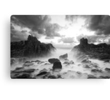 Wild World Canvas Print