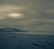 Winter Beach #1 by Remco den Hollander