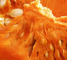 Pumpkin Flesh with Seeds  by keem