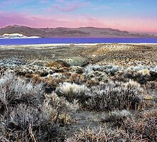 Pyramid Lake at Sundown #5 by SB  Sullivan