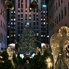 Rockefeller Christmas tree and ice skating rink pictured on December 19, 2011  by Anton Oparin