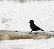 Black Crow by Nazareth
