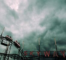The Roller Coaster at the End of the World by Andrew Walker